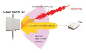 interference-immunity-300x188